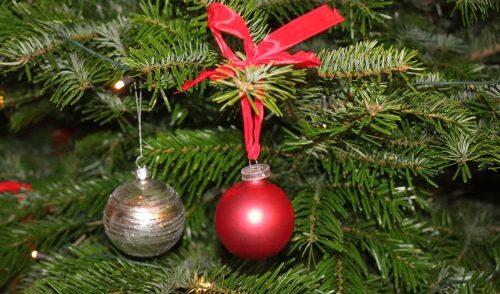 Artikelbild zu Artikel Frohe Weihnachten!